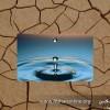 عضو شورای مرکزی خانه کشاورز زنجان: بحران آب در بخش کشاورزی، جدی است