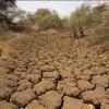 دشت ابهر در بحران کم آبی