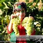 پنج عکسِ ماندگار، از دوربینِ سعید حاجی خانی