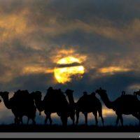 تصاویر نمایش غدیر شهرستان ابهر